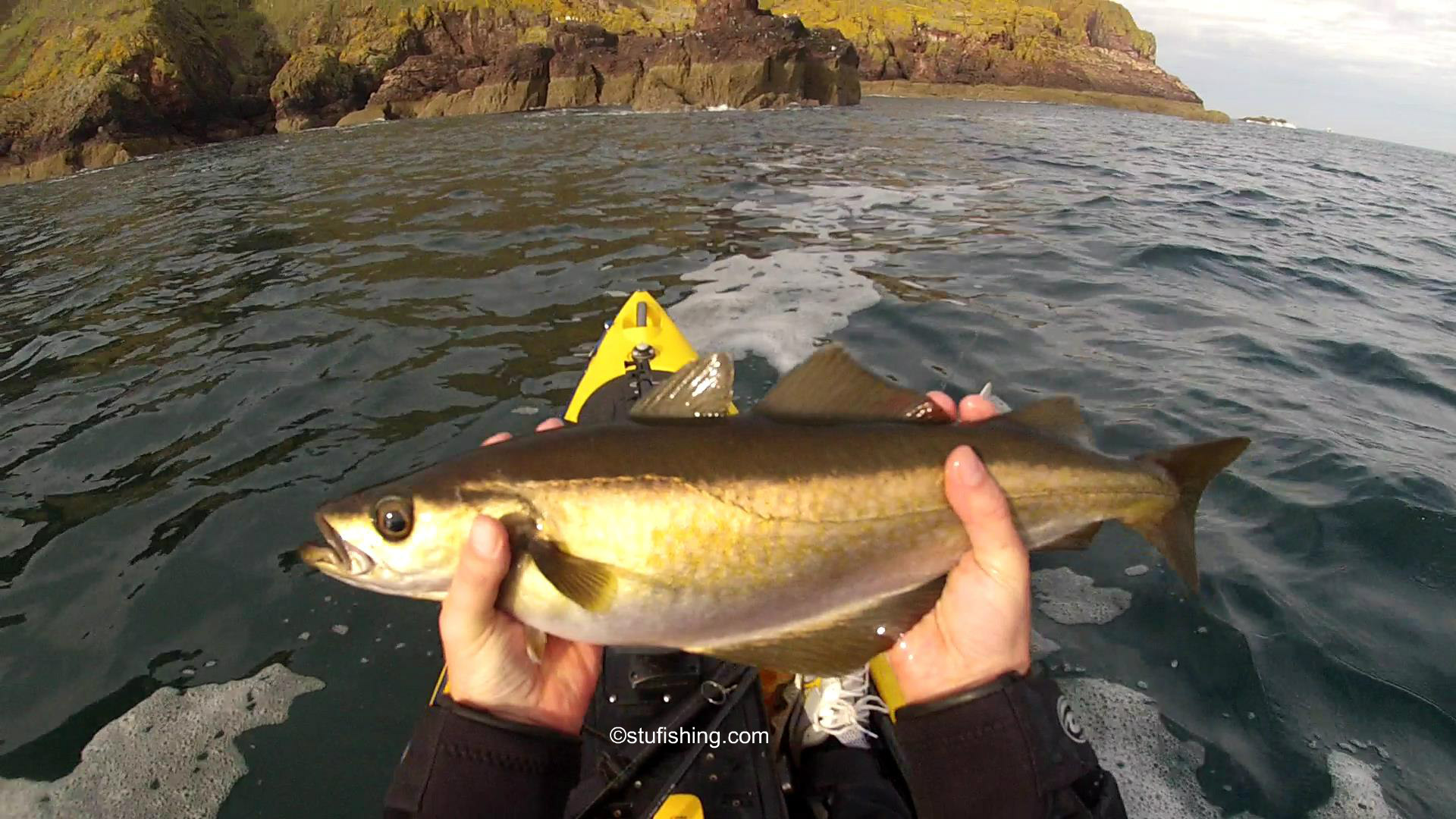 Kayak Fishing Once More – Back to St Abbs