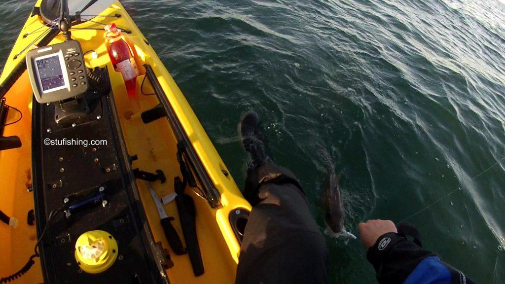 Savage Gear Sandeel Lures Kayak View