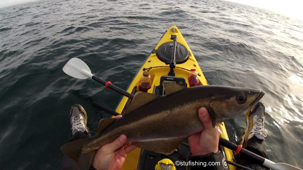 St Abbs Kayak Fishing Second Pollock side view