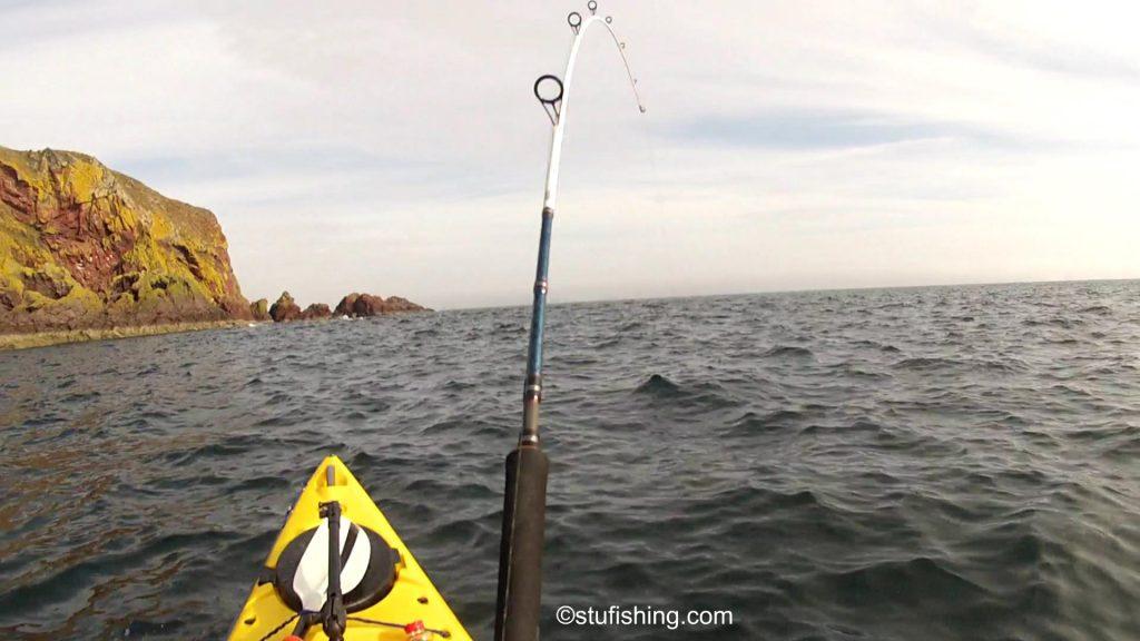 St Abbs Kayak Fishing Cod On