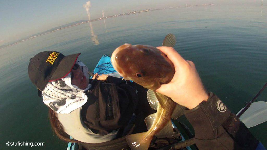 Kayak Fishing Redcar Codling