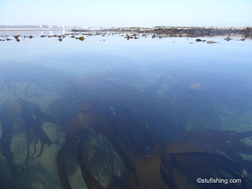 Kayak Fishing Redcar clear water