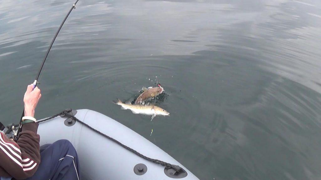 Skinningrove Boat Fishing Trip