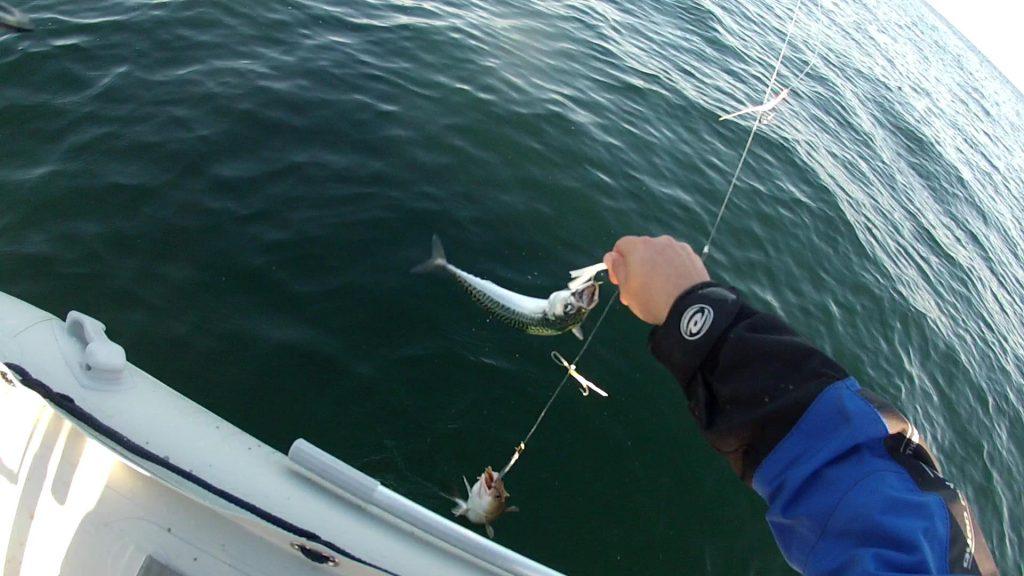 Boat Fishing at Skinningrove